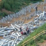 Салават Купере: Строители на срубке оголовков свай, позиция 11-5 (фото 06.07.2015)